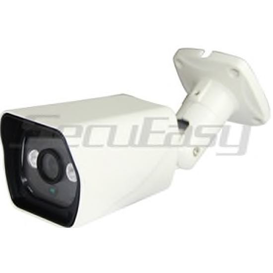 Camera IP Sans FIL WIFI 1 MP Antivandale infrarouge D1833